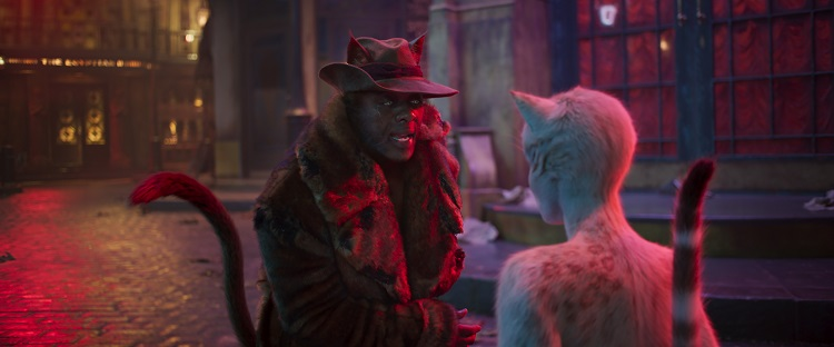 cats_movie02
